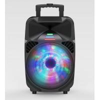 Portable Speaker  DWQ-6115