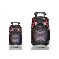 Portable Speaker DWQ-7130-8-12