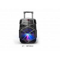Portable Speaker DWQ-8130-8