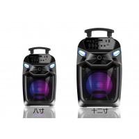 Portable Speaker DWQ-8132-8-12