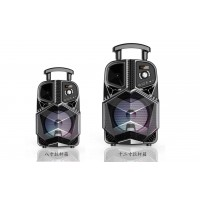 Portable Speaker DWQ-8133-8-12
