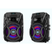 "15"" Trolley Speaker with Light"