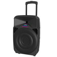 "Portable Speaker 220 (12"" woofer)"