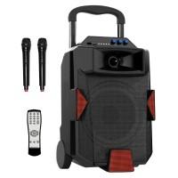 Portable Speaker 4020,  2 Wireless Microphone