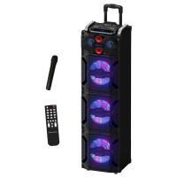 Portable Speaker 43120, Analog Amplifier