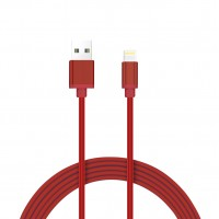 USB Data Cable (iPhone) 1