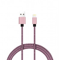 USB Data Cable (iPhone) 2